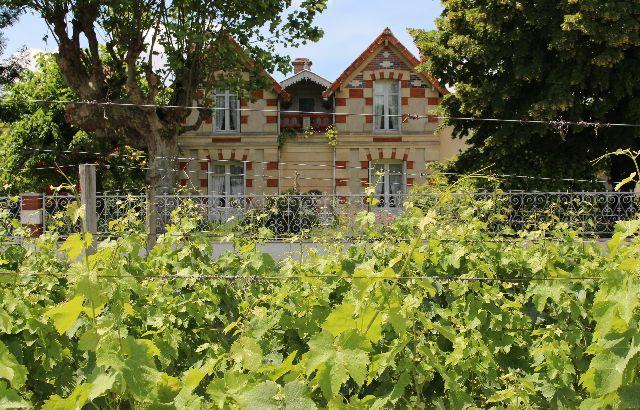 Visite/dégustation biodynamie au Château Nodot